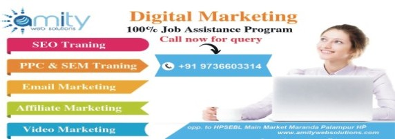 Online Marketing Amity Web Solutions
