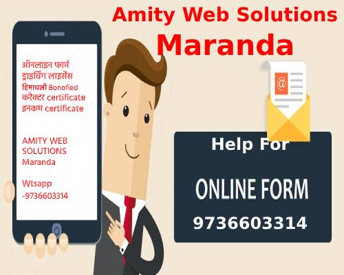amity web solutions